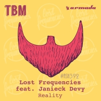 Текст и перевод песни Lost Frequencies ft. Janieck Devy - Reality
